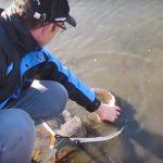 Vis redden uit Slingebeek Aalten.